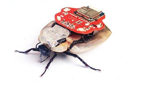 Backyard Brains RoboRoach Cockroach Neurosurgery Kit